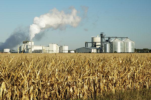 Biodisel/Ethanol
